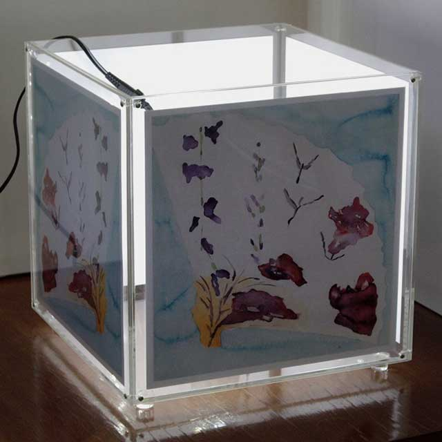 Lampada Cubo Porta Foto Illuminata Ludovic Plexiglass